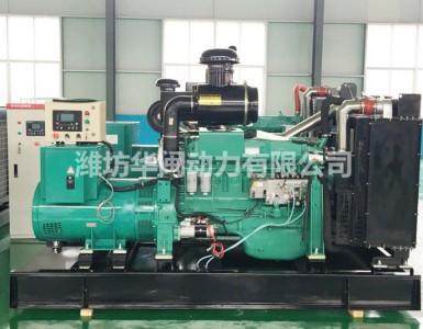250KW潍坊系列发电机组