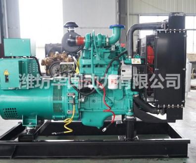 康明斯20kw柴油发电机组4B3.9-G1